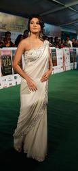 Жаклин Фернандес, фото 51. Jacqueline Fernandez 11th Annual International Indian Film Academy (IIFA) Awards at Sugathadasa Stadium in Colombo, Sri Lanka on June 5, 2010 - MQ/LQ, foto 51