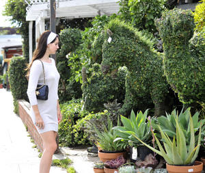 http://img217.imagevenue.com/loc669/th_158913999_LanaDelRey_OAHollywood_October11_2012_15_122_669lo.jpg